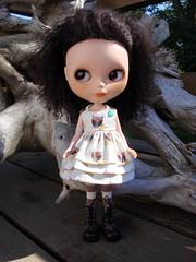 Cute Hoot Dress