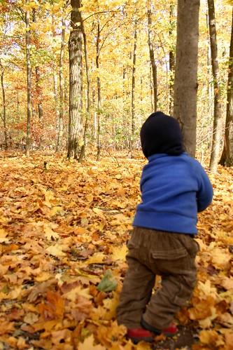 Herbst im Waldkindergarten VI