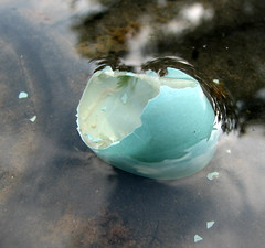 Broken Dreams 5.31.07 (lenz art) Tags: blue broken nature fountain robin gardens