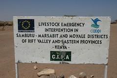 183 - Kalacha - The Drought (FO Travel) Tags: kenya nairobi nakuru karama lewa baringo naivasha turkana gabra chalbi suguta nariokotome kalacha loyangalani logipi