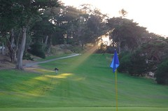 Sunbeam on the golf course