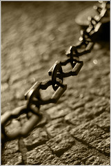 Link me (turbomg) Tags: lake como lago 50mm chains dof bokeh chain explore catena catene dcm legami photoexplore