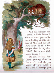 Cheshire Cat and Alice-1