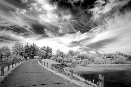 Guelph Lake, Infrared