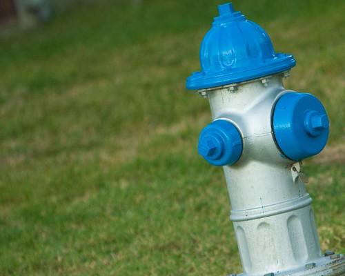 a boy fire hydrant