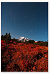 Falling for Stars (Don Jensen) Tags: park autumn mountain fall colors night photography star paradise trails mount national rainier startrails noucturn