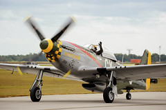 G-U-N-F-I-G-H-T-E-R (Angelo Bufalino - Avstock.net) Tags: show wings nikon force air wwii north over houston american larry mustang nikkor 28300mm warbird commemorative gunfighter p51d lampkin f3556 d700