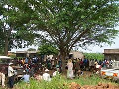 Drama show under a tree