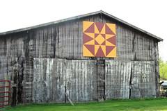 IMG_8502r1 (garywbecker) Tags: folkart kentucky hillcountry quiltdesign