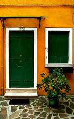 Burano - Yellow house with green door and shutters, and pot plant (Michael-D) Tags: door venice italy house colour window yellow architecture europe weeklysurvivor burano greendoor colouredhouses windo potplant top20architecture mt2burano