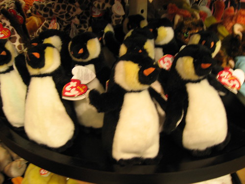 Other pinguins