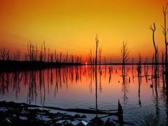 Manasquan Reservoir Sunrise - by Bob Jagendorf