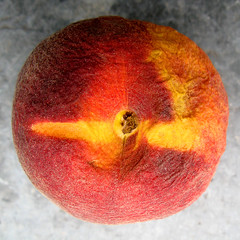 Pêche 03 (theredshoot) Tags: orange fruit jaune rouge gris soleil ride peach nourriture olivier mure pourri rond pêche aliment vieu theredman lerouge