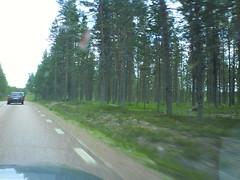 Driving between Särna and Älvdalen