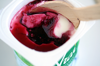 Elderberry Yogurt