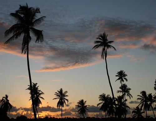 Puesta de sol en la Isla de Mafia