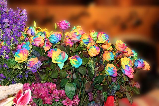 Tienda de Rosas Arco Iris
