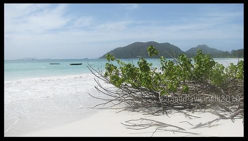 Seychelles Cote d'Or Praslin