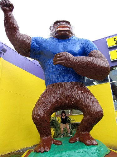 Giant shirted gorilla