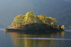 trees (andythum) Tags: scotland landscapes trossachs lochs lochkatrine