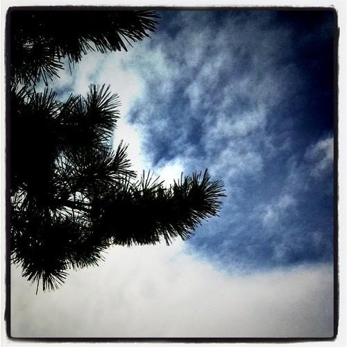 今日の写真 No.50 – 西大寺/iPhone4 + Instagram