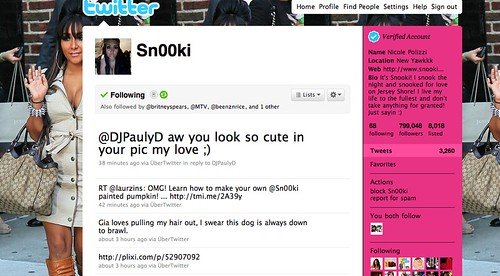 Snooki tweeted about my Snooki pumpkin!