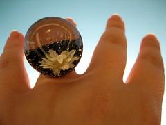How to reach the sky. (la_celestina) Tags: flower hand flor mano anillo ltytr2