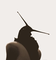snail in my hand - by Per Ola Wiberg ~ Powi