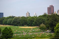 The Great Lawn (Tanya Sharkey) Tags: park new york ny green nikon great central d70s lawn bulidings photofaceoffwinner pfosilver