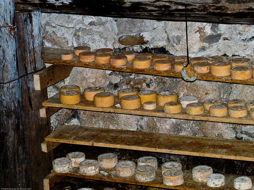 Cheese in the Caves