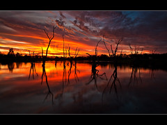 Bath of Fire (Matthew Stewart | Photographer) Tags: sunset red orange reflection water bravo matthew australia brisbane stewart qld queensland