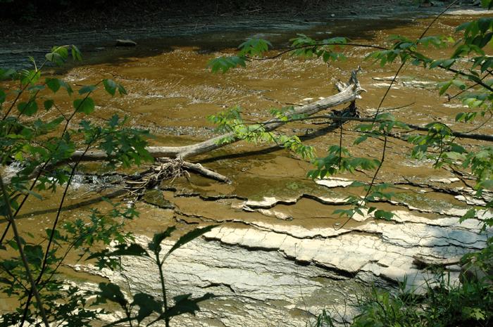 euclid creek reservation