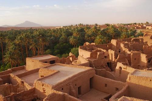 بلادي الجزائر الحبيبة 703852989_343eab0943.jpg
