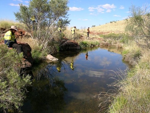 Waterhole first view