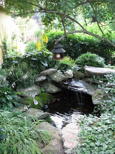 Flickriver: Photoset 'Garden Places' By Pandorea