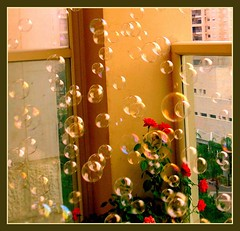 Soap bubbles in the air... - by urimal