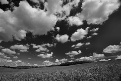 Clouds (Red Snapper9) Tags: clouds reading caversham rs9 anawesomeshot holidaysvacanzeurlaub morganswood
