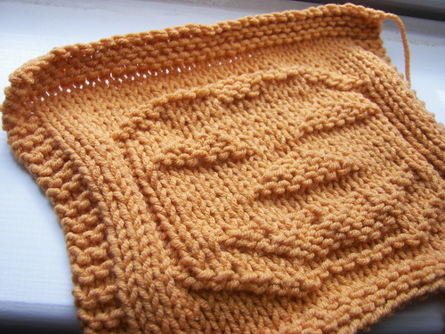 Pumpkin dishcloth