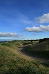 Near Kingsbarns Golf Course (Mq) Tags: beach scotland fife szkocja kingsbarns plaa eastneuk