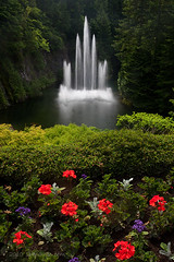 Butchart Garden - by flopper