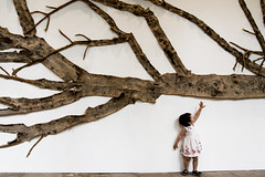 Branch (jaime m) Tags: lafotodelasemana branch getty rama violeta bigworld ltytr2 ltytr1 superlativas lfs062007 jaimemonfort