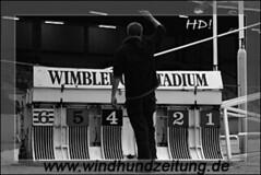 Wimbledon Greyhound Stadium - gleich gehts los ...
