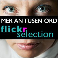 Flickr selection banner