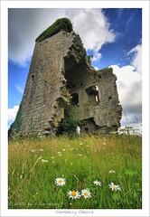 Garbally Castle (HaukeSteinberg.com) Tags: ireland flower castle galway canon ruin wideangle irland towerhouse ire sigma1020 okelly 400d top20castle fineimage garbally skehana irlgallery