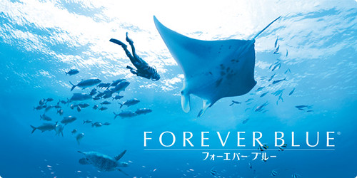 Forever Blue for Nintendo Wii