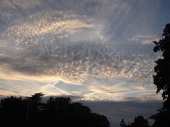 sunset over hurlingham (PH Factor) Tags: july 2007 hurlingham excellentphotographersaward