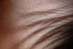 wrinkles (Photo_Freak) Tags: macro flesh skin wrinkles 105mmf28gvrmicro