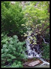 Palangan (kavan.) Tags: green water waterfall iran ایران kurdistan آبشار sanandaj fujifilmfinepixf10 سنندج کردستان palangan kamyaran پالنگان کامیاران