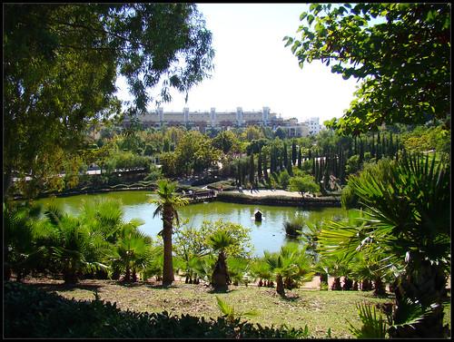 Parque de La Paloma (5)