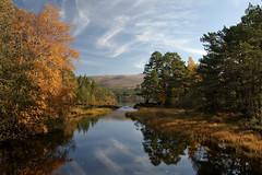 Loch Morlich in Autumn (Margaret J Walker) Tags: autumn reflection scotland highlands aviemore lochmorlich cairngormmountains